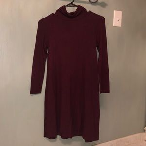 Turtle neck long sleeve dress from American Eagle